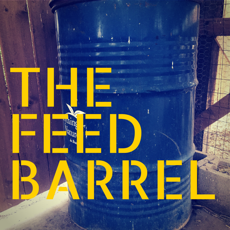 The Feed Barrel
